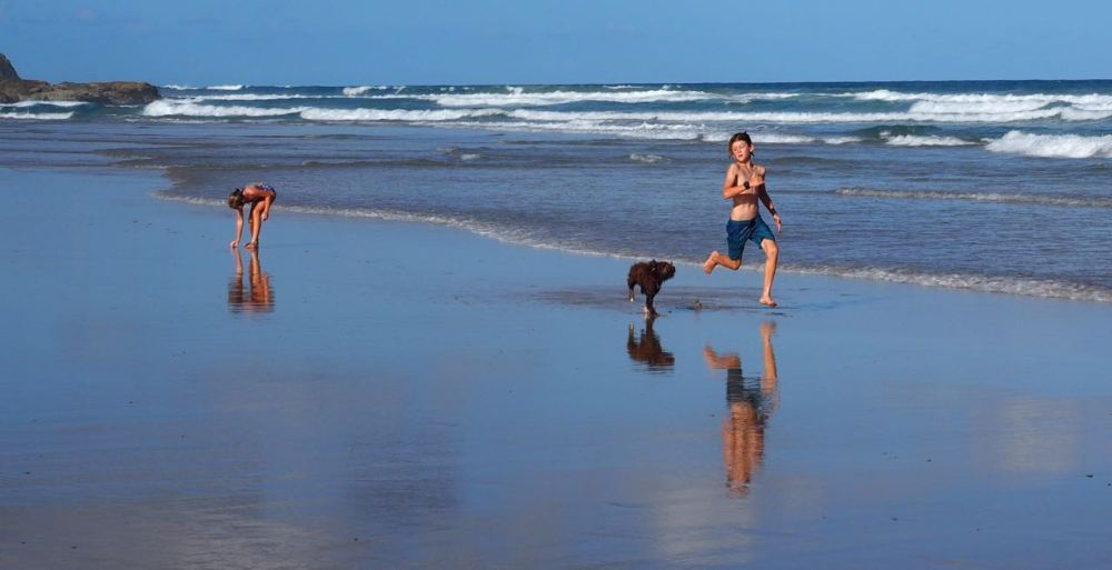 Children and dog on emerald beach