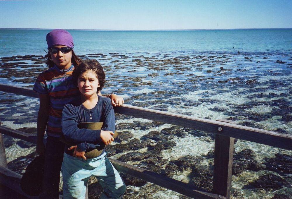 r-c-and-stromatolites_blog