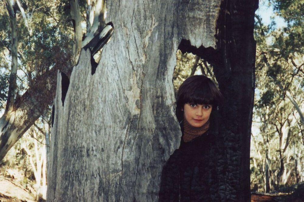 clare-burnt-tree_blog