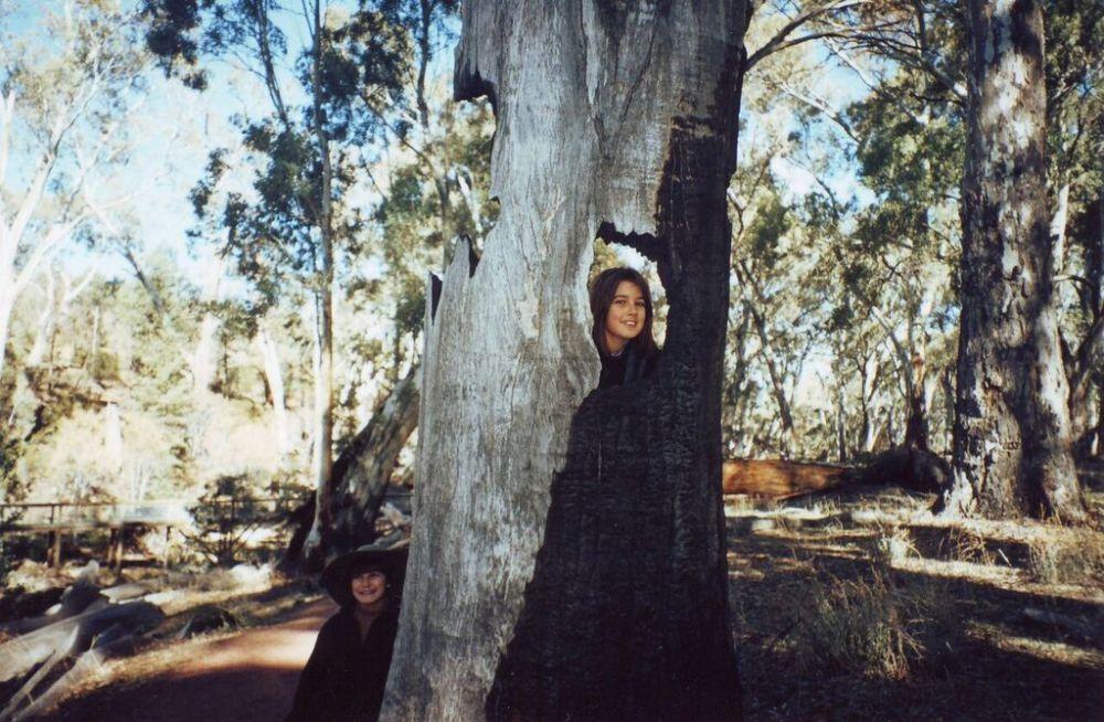 ruby-burnt-tree_blog